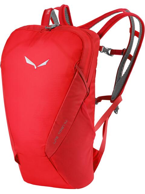 Salewa Lite Train 14 Backpack Devil